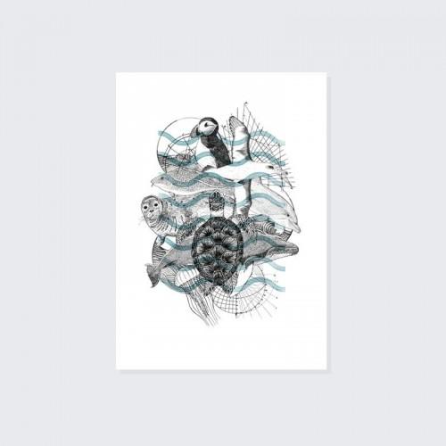 Marine Animal A4 Print
