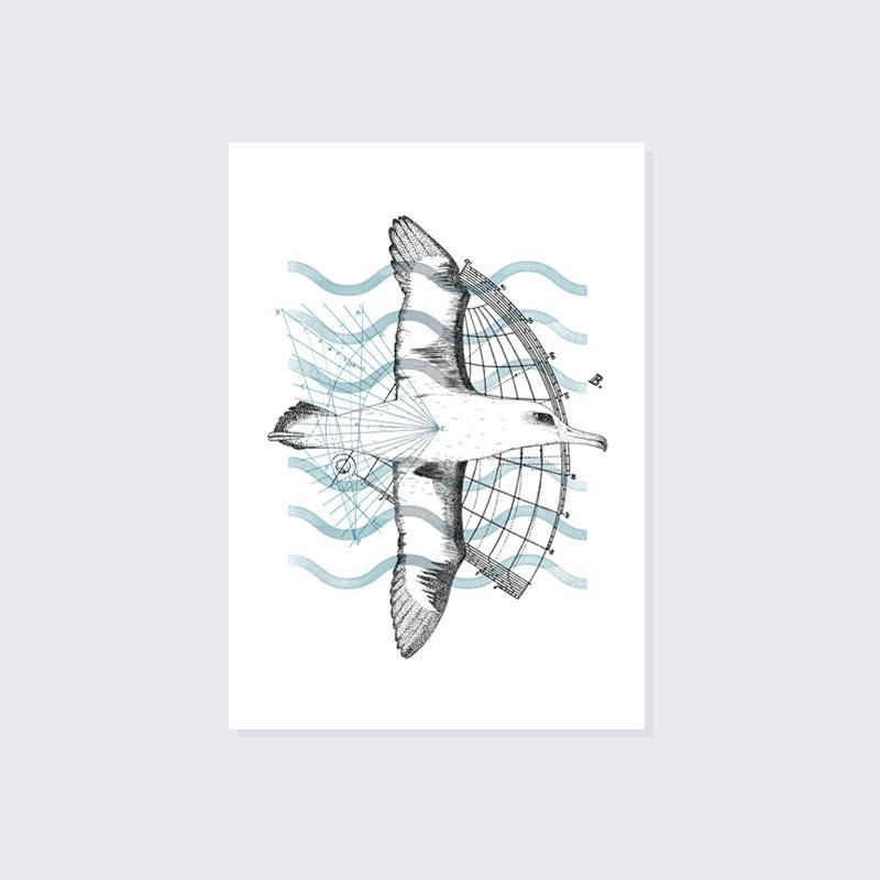 Albatross A5 Print