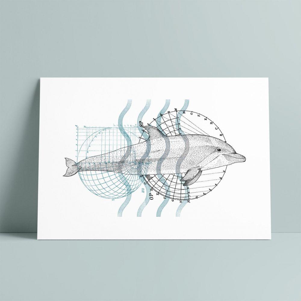 Dolphin A5 Print